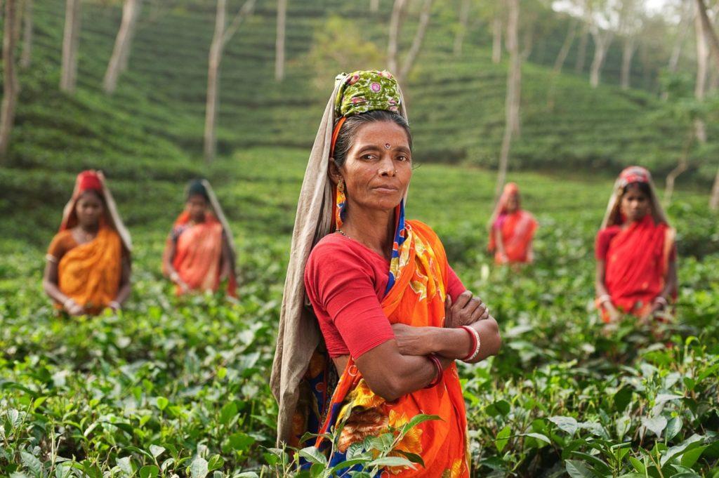 Indian-women-farmers-1-1600×1064-1-1024×681